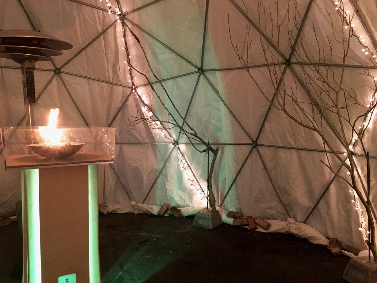 Entwined Forest featuring Manifestation by Katie Forbes & Dan Brown, Fallen Tree Branches, Concrete, LEDs, Public Art Installation for BWB Winter Ball 2017 by Jyl Bonaguro, Jeff Zelnio, Ayda Keschtkar, Marie Socha