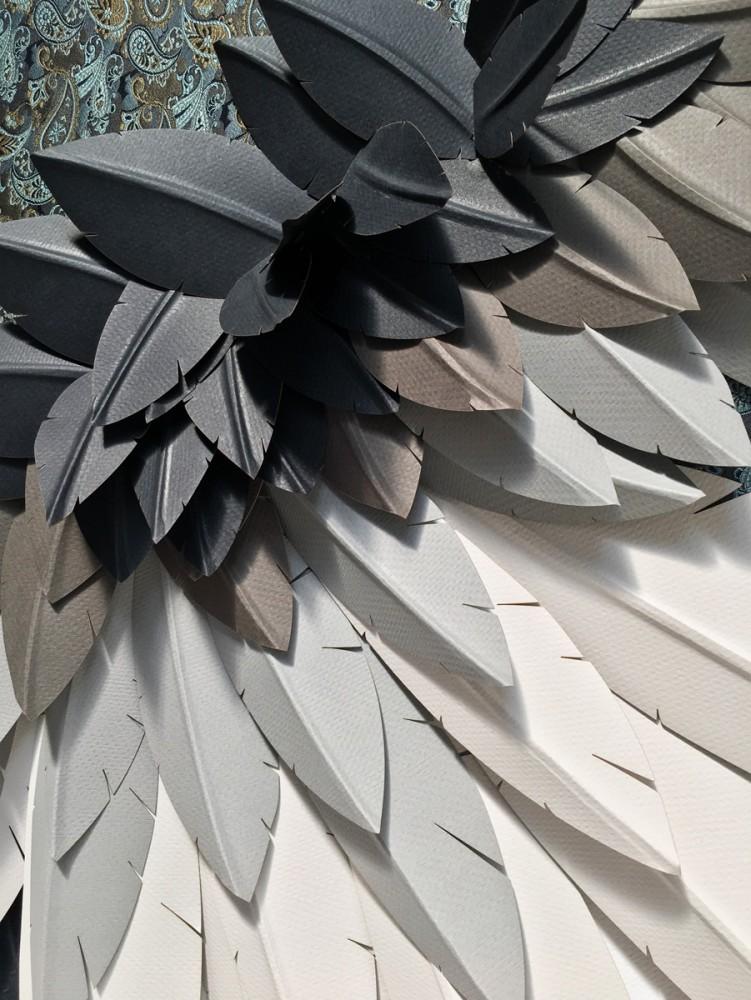 Plumage, Wing Series