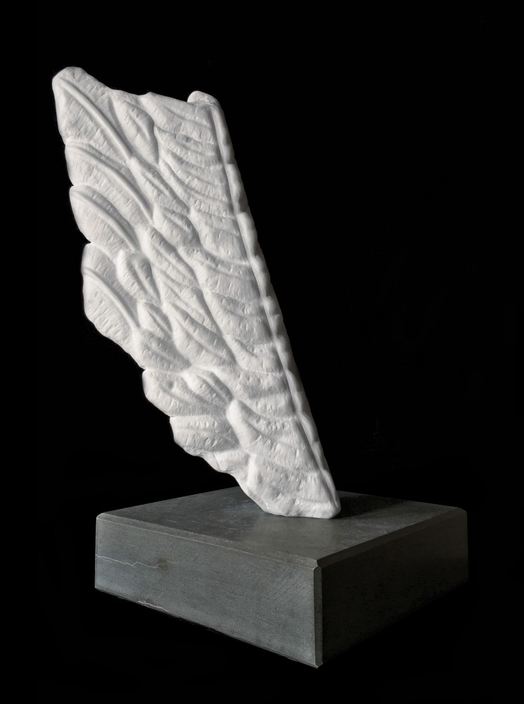 Alight, Wing Series